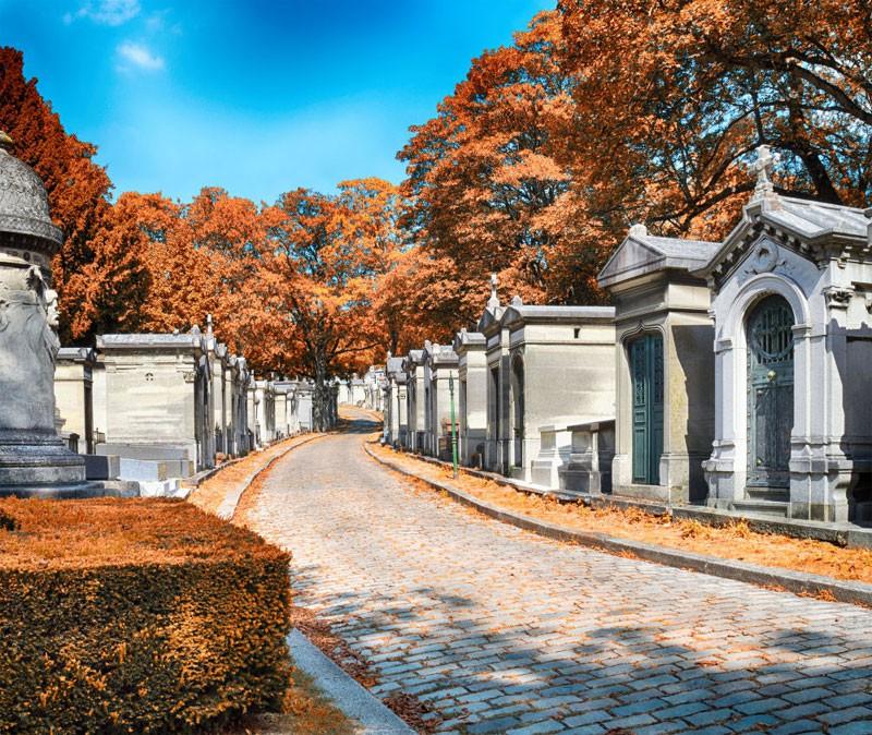Lối đi tại Nghĩa Trang
