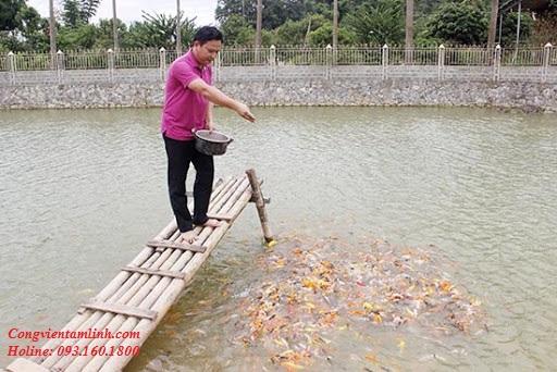 Lựa ngày lành tháng tốt để xây hồ nuôi tôm cá