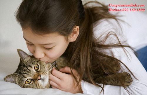 Xem Ngày Đẹp Nuôi Mèo Tốt Cho Gia Chủ